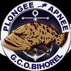 vignette-logo-gcob-section-plongee-et-apnee-bihorel-les-rouen-en-normandie-v3